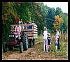 fall hayrides to the pumpkin patch